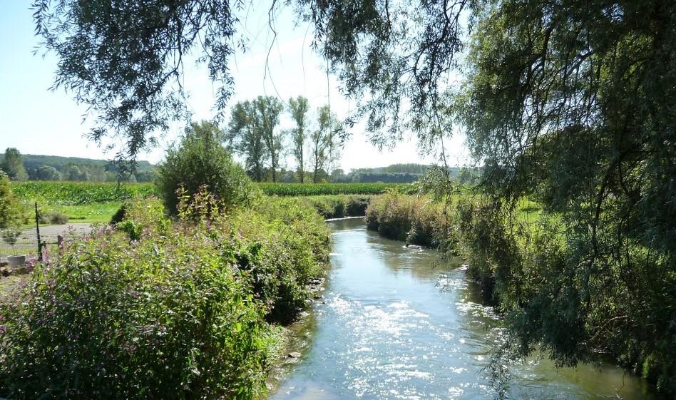 Sint-Agatha-Rode River Dijle