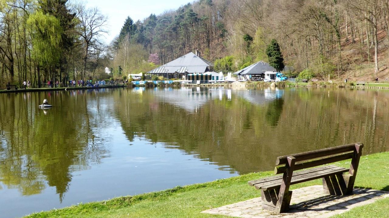 Bois de Rêves Recreational Domain
